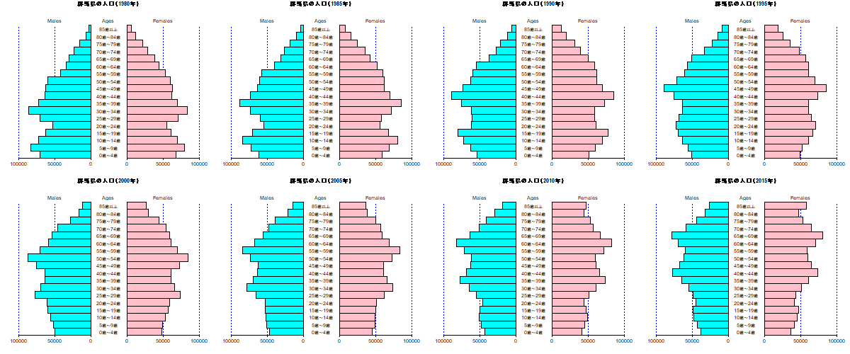 How to make population pyramid